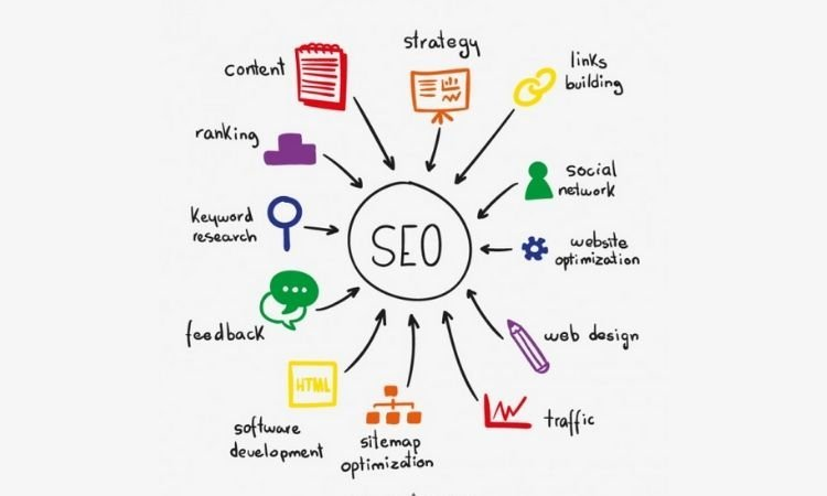 Best SEO Service in Noida